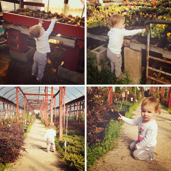 gardeningstringer