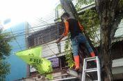 Tim Gabungan Tertibkan Belasan Bendera Ormas di Tambora