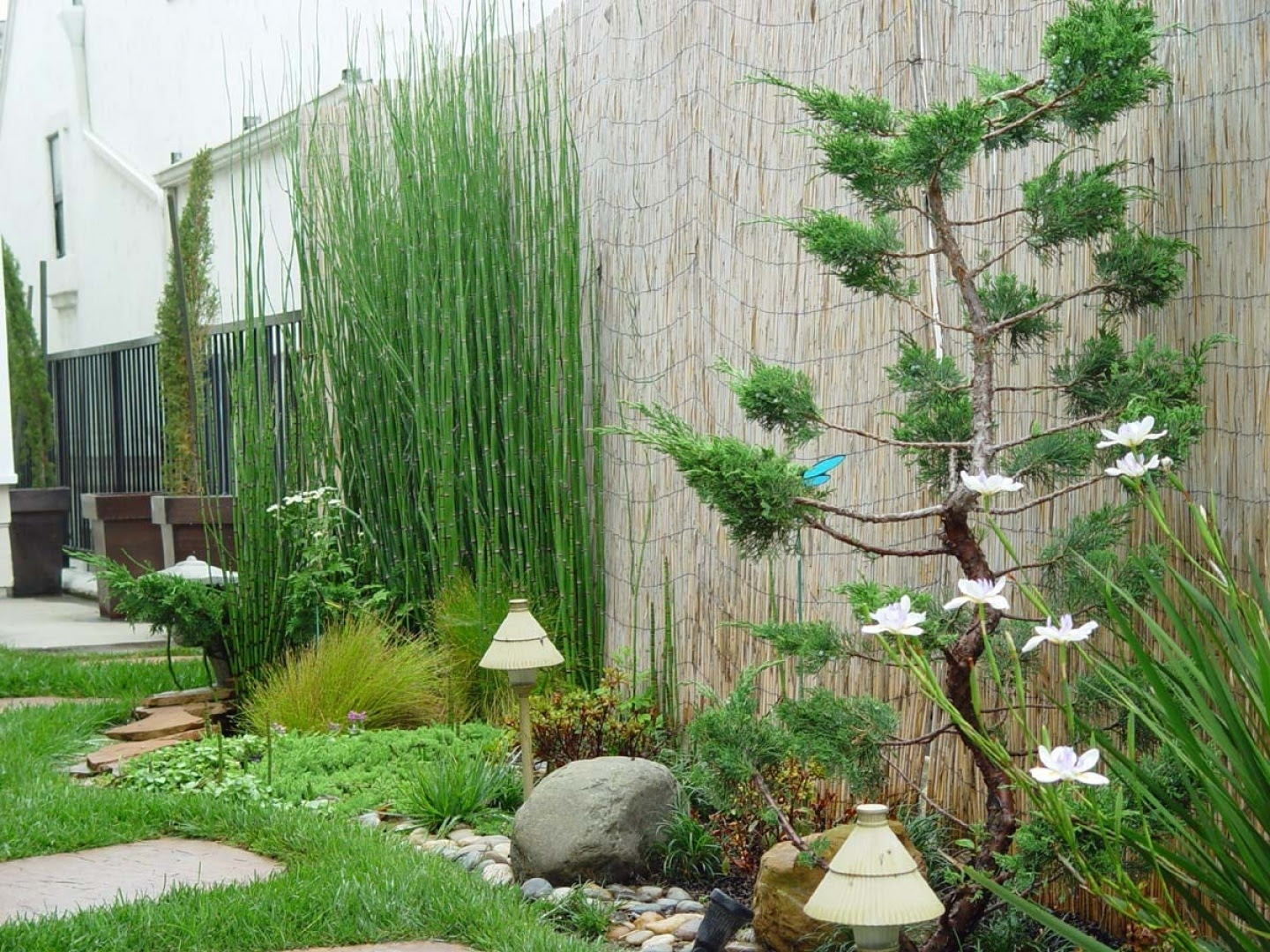 Small Japanese Garden Design - windowsunity
