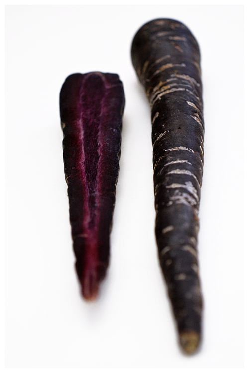 purple carrot© by Haalo