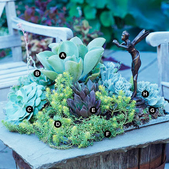 Stone slab succulent table garden