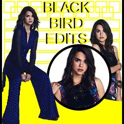 BLACK BIRD EDITS