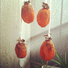 thanks mayumi-san! drying #kaki #japan #persimmon