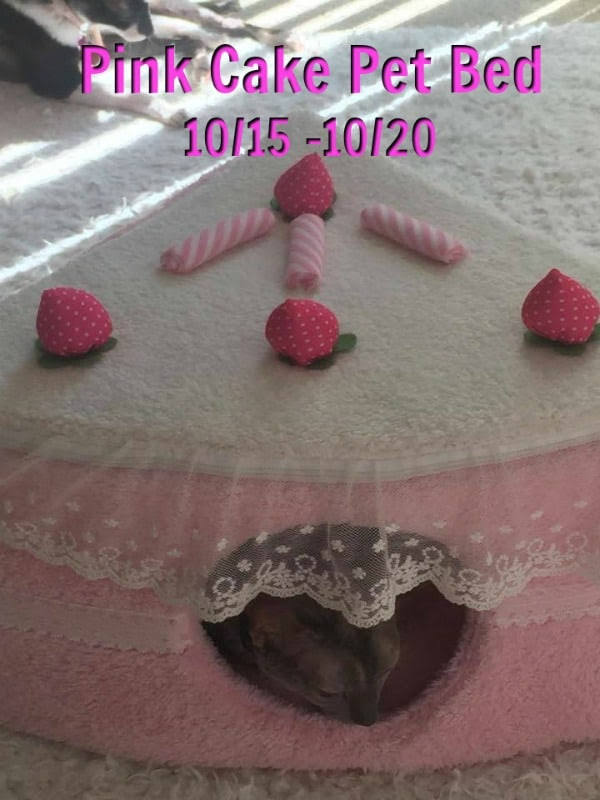 Enter the Pink Cake Pet Bed Giveaway.Ends 10/20