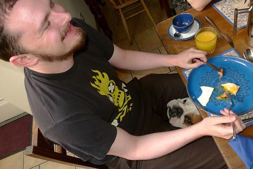 Declan & Bertie The Bulldog
