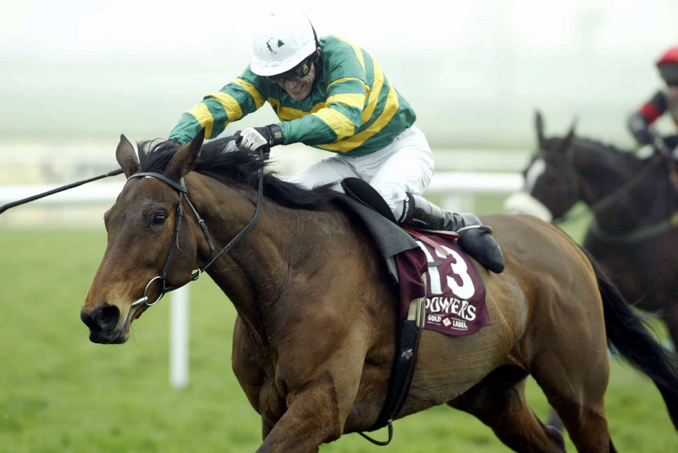 Pin by Horse Racing Ireland - goracing.ie on Stars of ...
