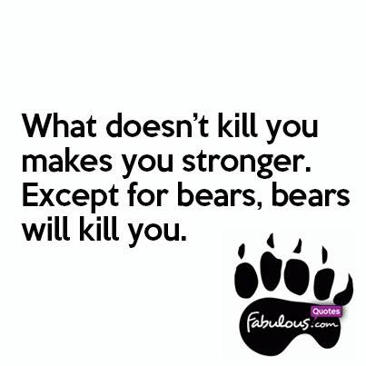 What Doesnt Kill You Makes You Stronger Except For Bears Bears