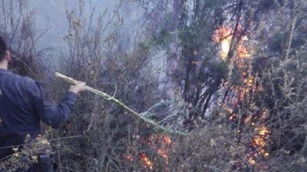 Incendio forestal San Salvador Cusco