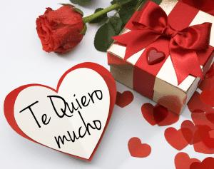 Imagen De Una Rosa Llena De Amor