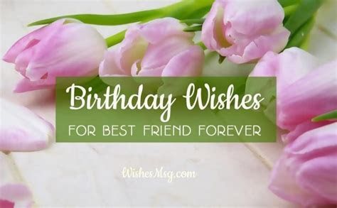 Birthday Wishes For Best Friend Forever   Male and Female