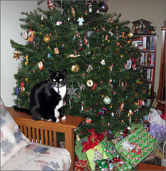 Merry Christmas 2007!