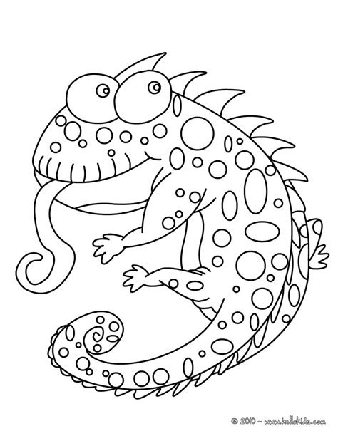 funny chameleon coloring pages hellokidscom