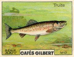 gilbert rivière 12