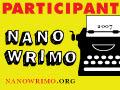 2007 NaNoWriMo Participant