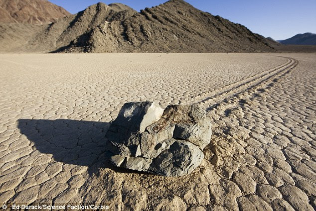 Leaving their mark: No one has actually been able to record the stones physically moving, but the trails they leave in the mudflats offers proof of the path that have taken
