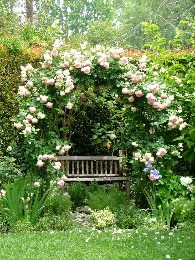 Gorgeous Natures Sleep In Landscape Shabby Chic With Knockout Rose