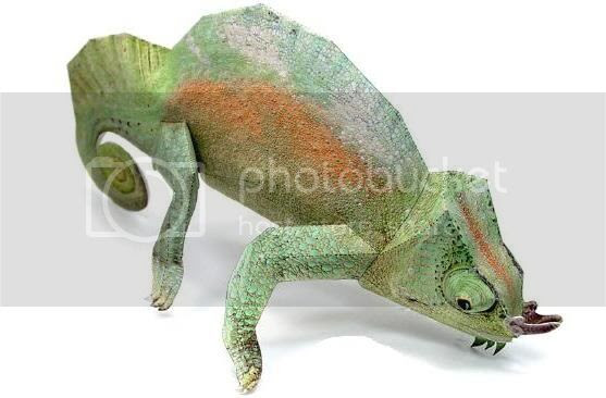 photo chameleonraspera987787_zpsf0ebe5cb.jpg