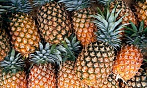 Group of Pineapples