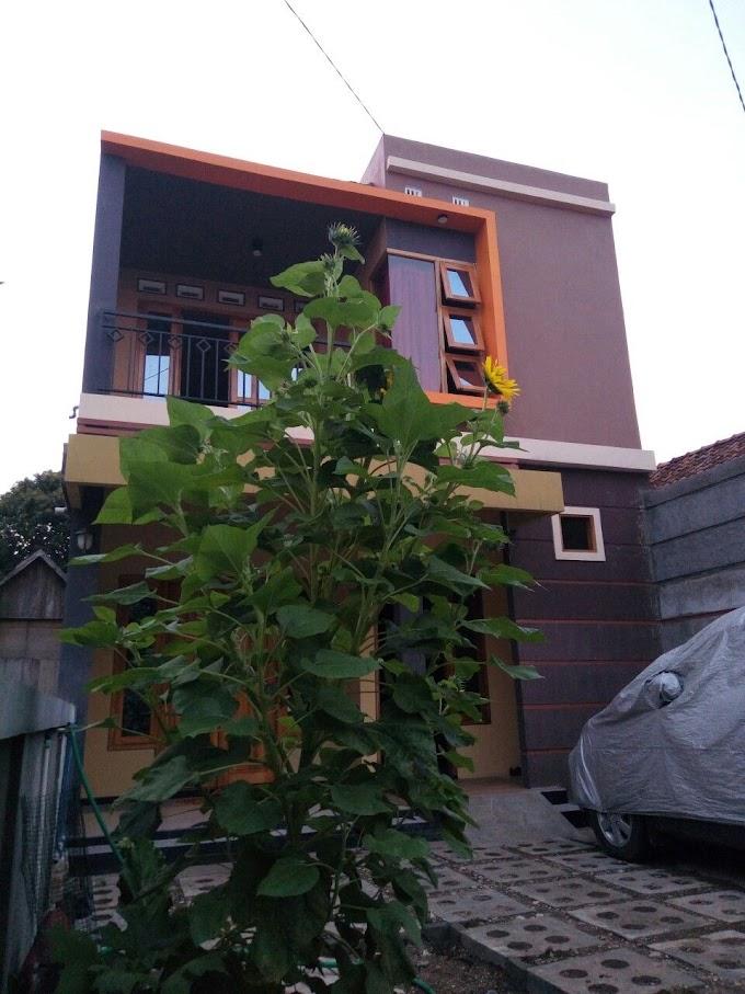 Rumah Minimalis Elegan Ukuran 7x12 | Ide Rumah Minimalis