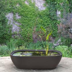Garden365 Water Garden | garden365