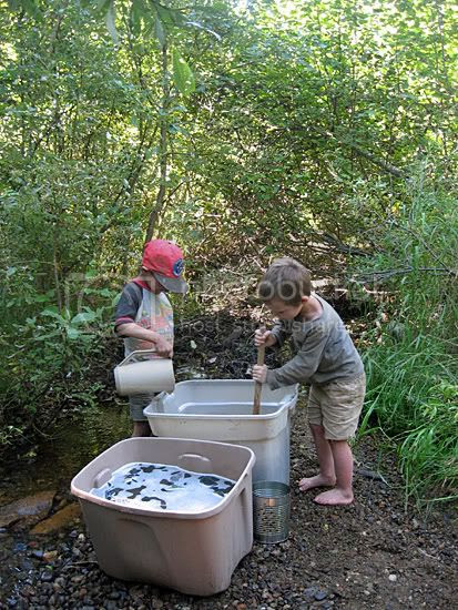 Boys Helping on Wash Day at the Creek