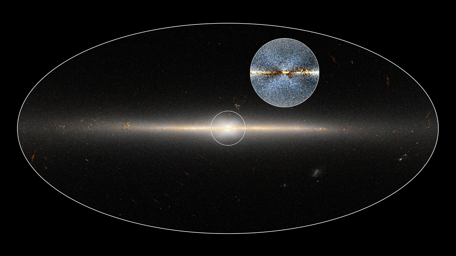 Researchers used data from NASA's Wide-field Infrared Survey Explorer (WISE) mission to highlight the X-shaped structure in the bulge of the Milky Way.