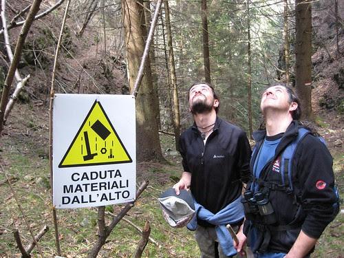 Pericolo @ Trentino