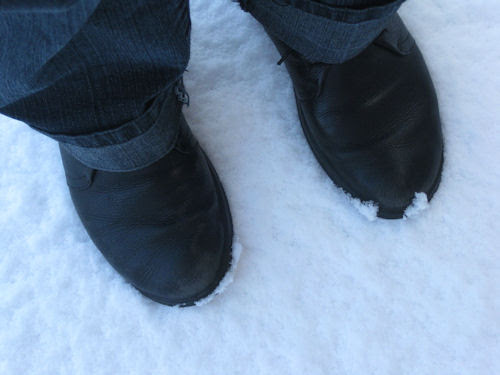 first snow :: første snø