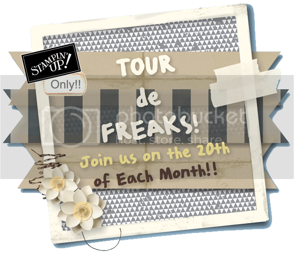 photo tourdefreaks2013_zps43a4f50a.png