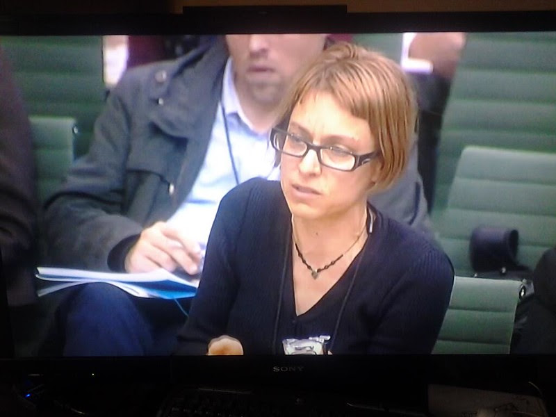 Transport Committee hearing 2 Dec 2013