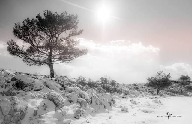 Αιπος Χιος χιονια ορεινα 19 1 2015