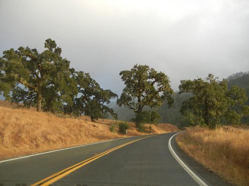 Sonoma, California _ 7733