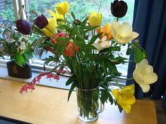 bluger flowers