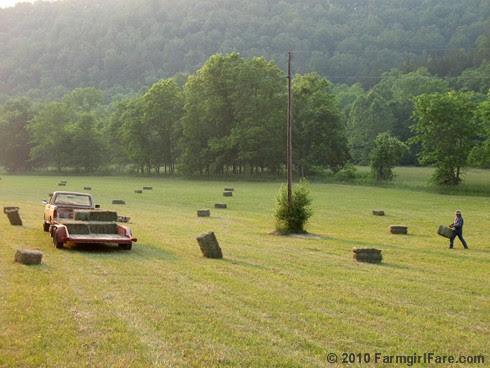 Saturday in the Hay 12