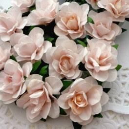 Róże angielskie bladoróżowe