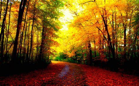 beautiful autumn wallpapers wallpaper cave