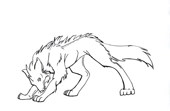 Maned Wolf Drawing at GetDrawings | Free download