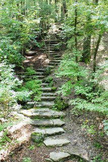 Stone steps in the woods
