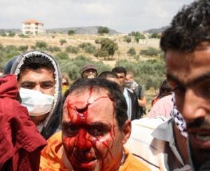 Hebron, arrestati due italiani La protesta contro i coloni israeliani