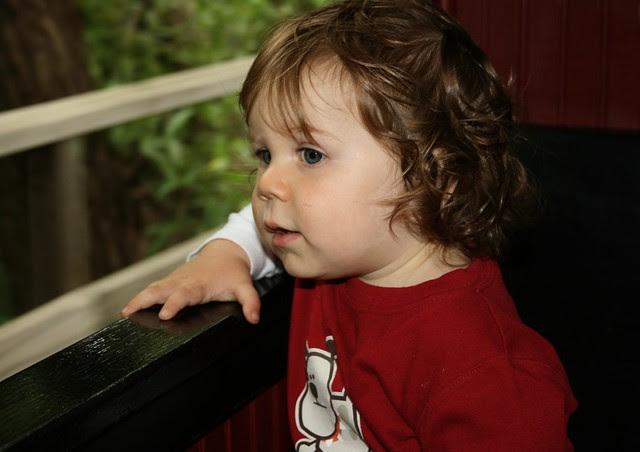 Zoo Train 2009