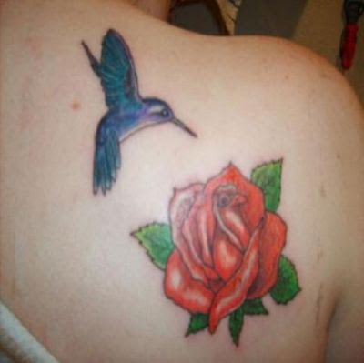 Hummingbird And Red Rose Pic Tattoo On Right Shoulder Blade