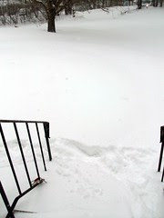 Snow_11211e