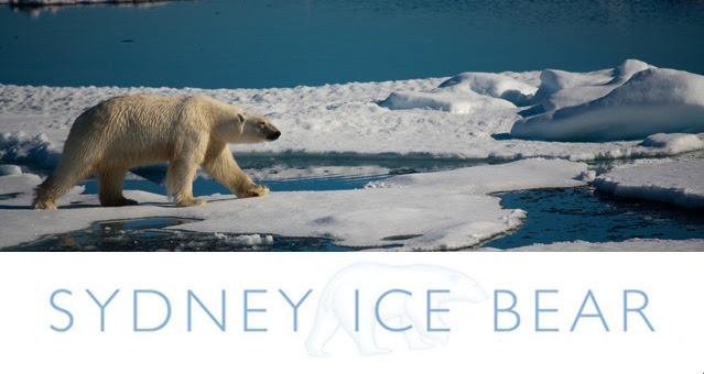 icebear_header-3164158.jpg