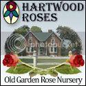 Hartwood Roses