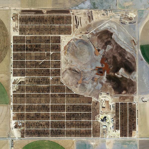 Randall County Feedyard, Amarillo, Texas (detail) (Mishka Henner, 2013)