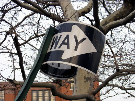 Say What -- Roebling Street One Way Sign