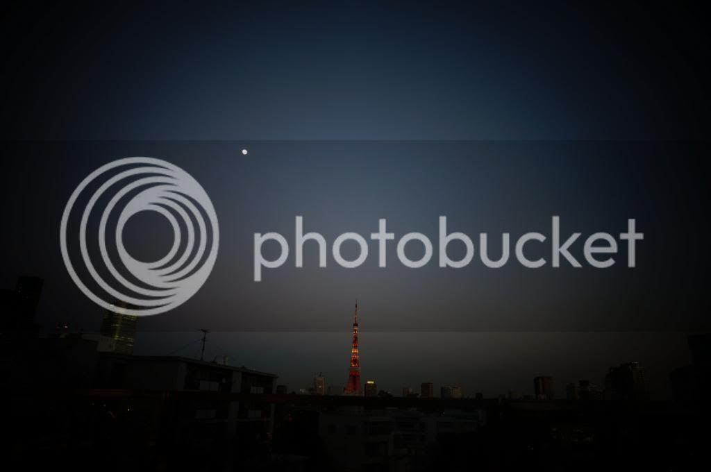 photo DSC04856_zps1b125002.jpg