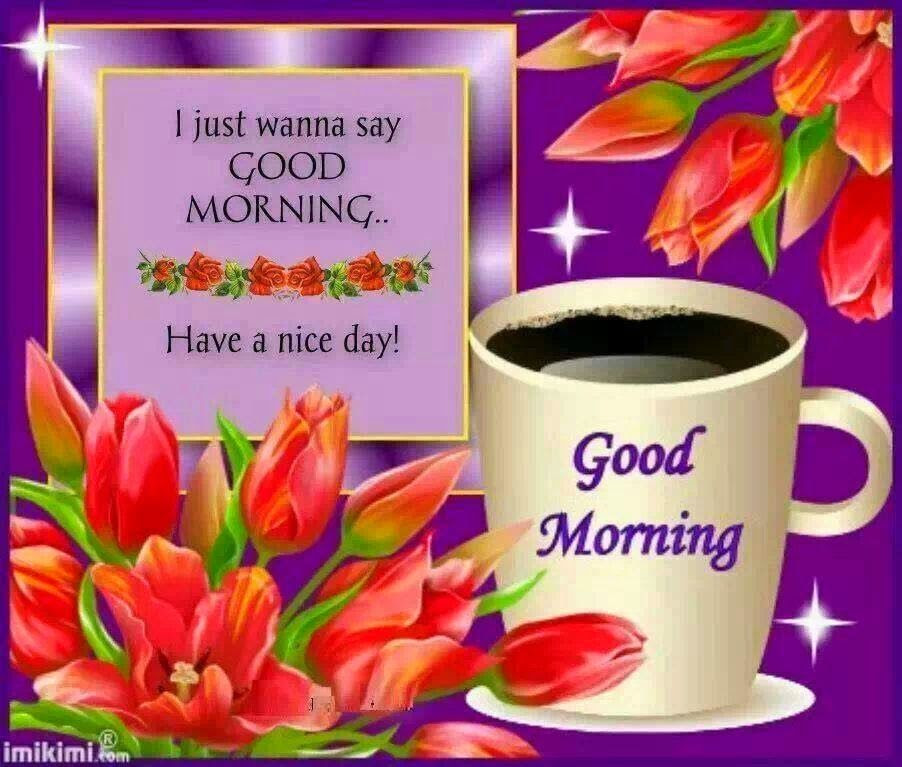 I Just Want To Say Good Morning Have A Nice Day Pictures Photos