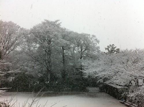 Wakeijuku courtyard covered in snow