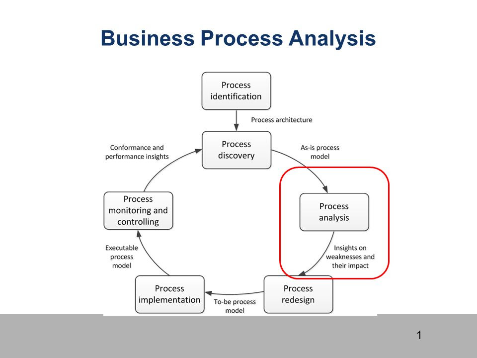 Business+Process+Analysis